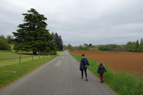 Where were we.....oh yes, walking (mainly uphill) from Duravel to Puy L'eveque