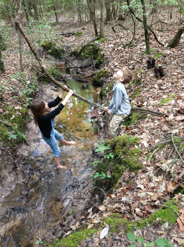 AR kids creek